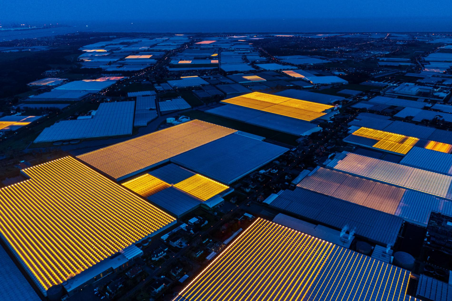 Innovative Farms of the Netherlands 10