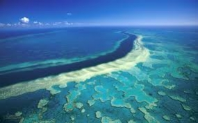 Australia's Great Barrier Reef is about to die