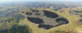 China grew bored of traditional solar farm layouts and created one depicting a giant panda bear