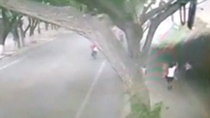 Video: 66ft Long Wall Is Blown Down by High Winds